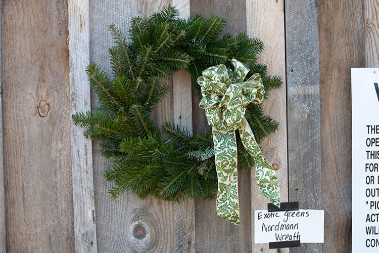 One of our many homemade wreaths for sale